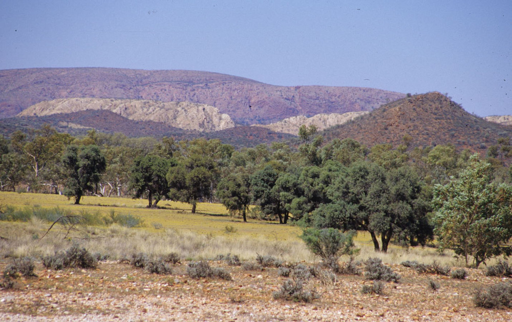 East MacDonnell Ranges, NT.