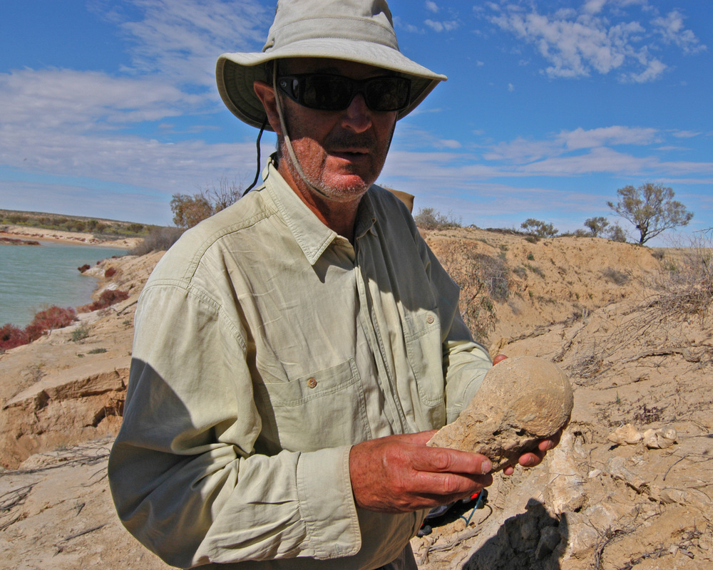 The expedition doctor examines a fossilised megafauna bone.