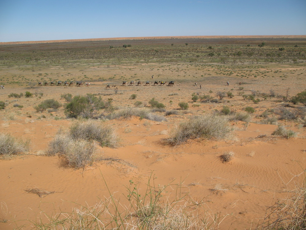 On the move, eastern Simpson Desert Archaeology Expedition 2008.