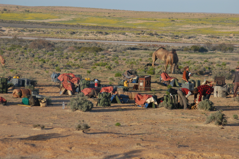 Typical camp on the Arid Rivers Expedition.