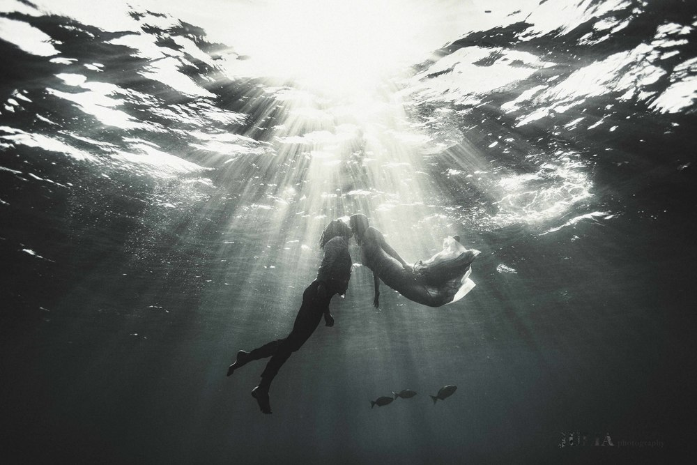 underwater photography, julia wheeler photography, julia wheeler, love, marriage, photographer, julia