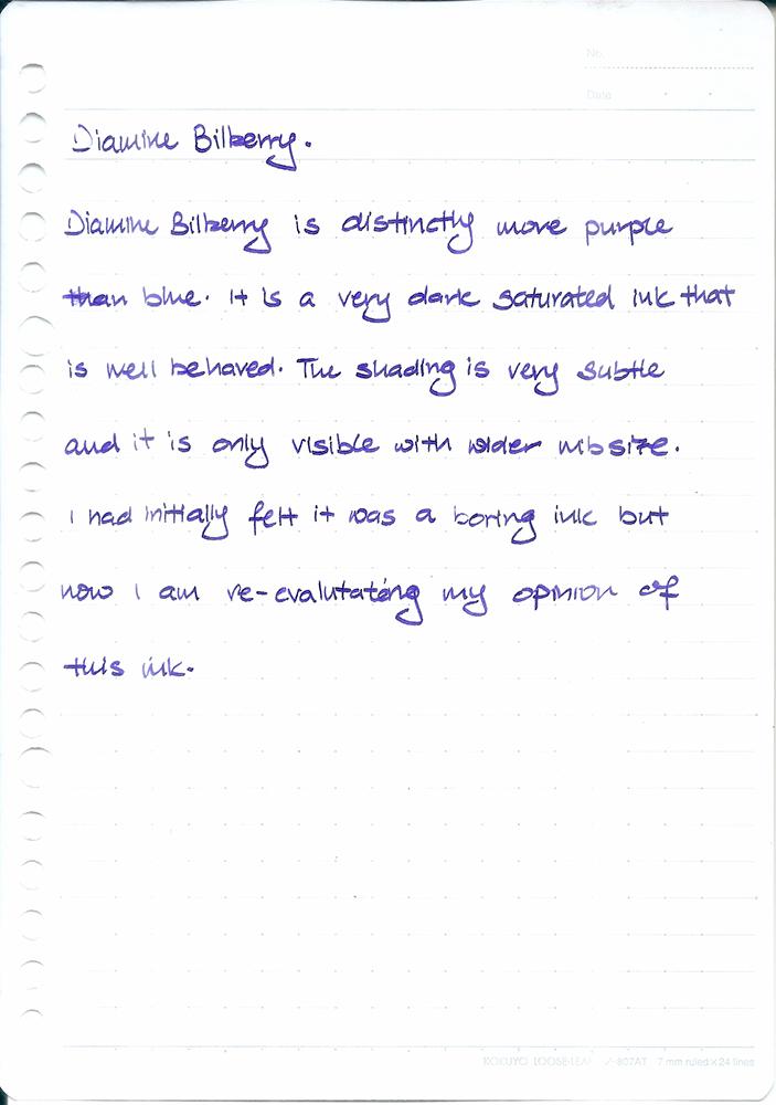 Diamine Bilberry 2.jpg