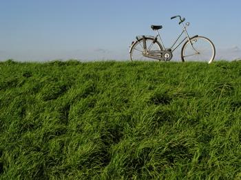 bike_on_dyke.jpg