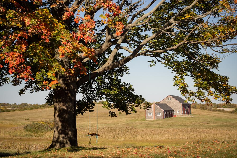 choateisland_2014_treehouse.jpg
