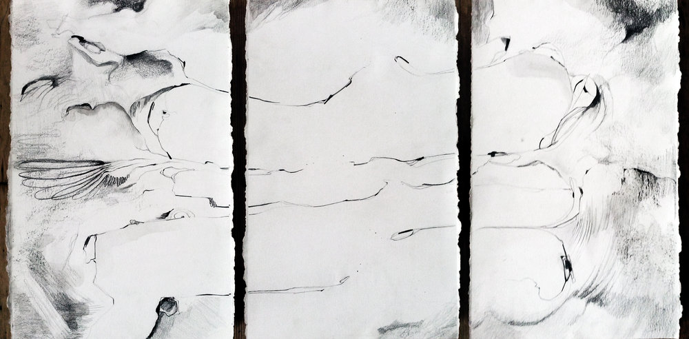 "sever - 18x39"" triptych, graphite, ink, and watercolor on paper, 2014"