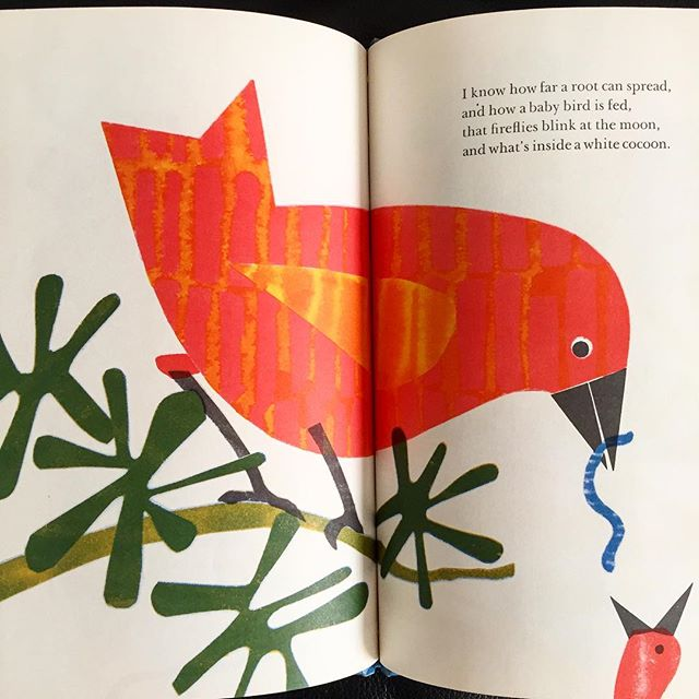 Helen Borten 'I know how far a root can spread And how a baby bird is fed' A double spread from her 1972 book, Do You Go Where I Go? She illustrated some fantastic children's books, a couple of the best have been reissued by @flyingeyebooks and she's rightly back in vogue. #helenborten #babybird #birdsofinstagram #feedingtime #midcenturymodern #childrensbooks