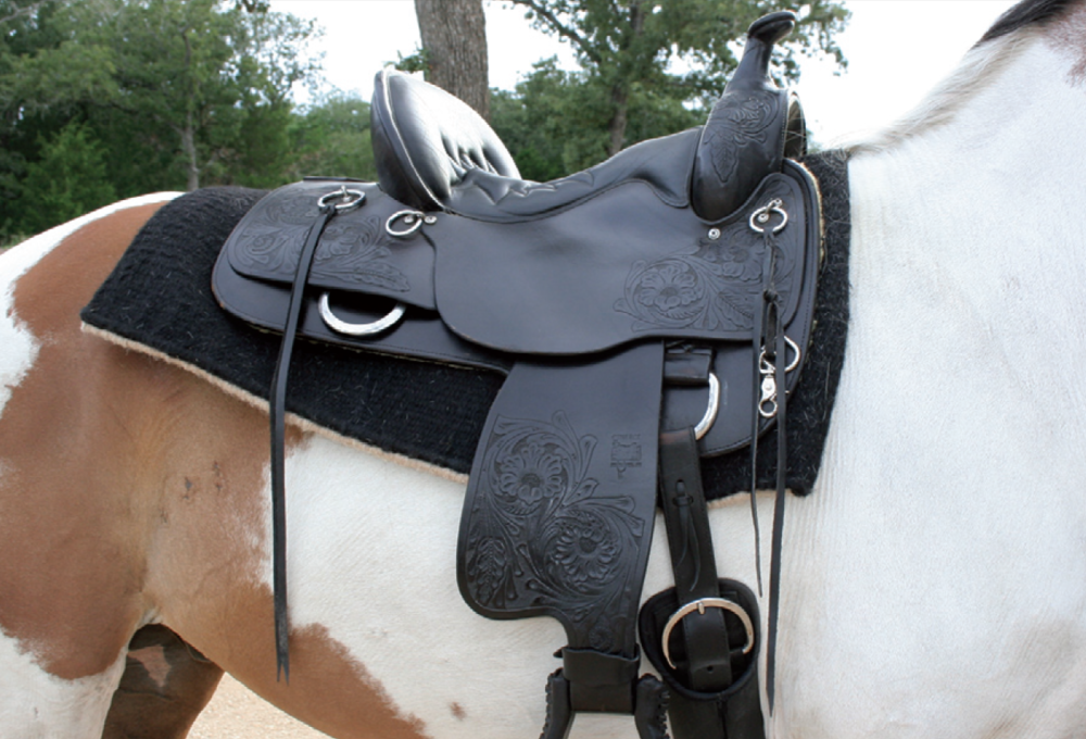 Great saddle fit-the saddle is level and there is adequate gullet clearance.