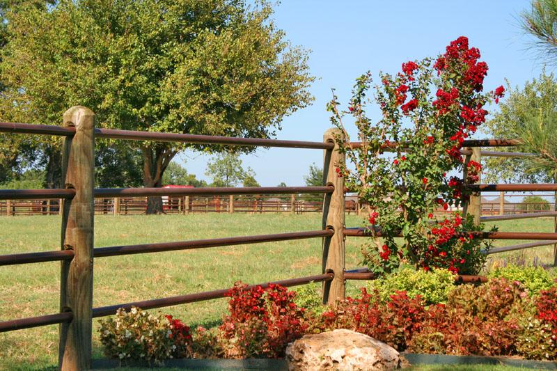 Ponderosa Fence -