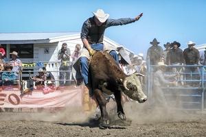 Rodeo Gear