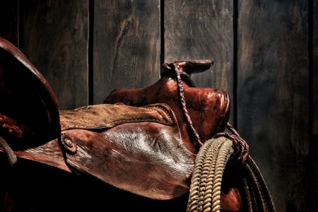 Saddles & Tack - Circle Y • High Horse • Rainsman • Tucker • Headstalls • Breast Collars • Bits • Spurs