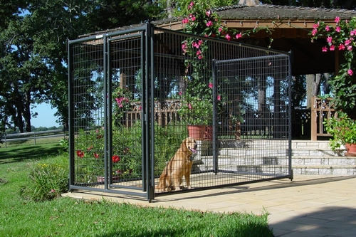 Kennels -