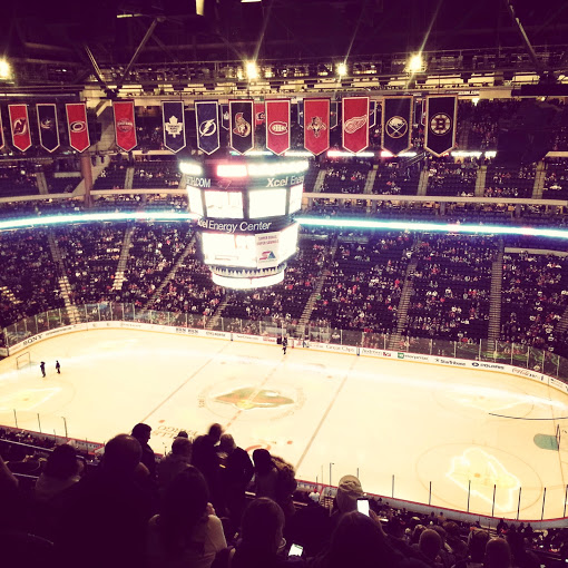 Went to a Minnesota Wild Game