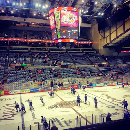 Went to a Fort Wayne Komets game