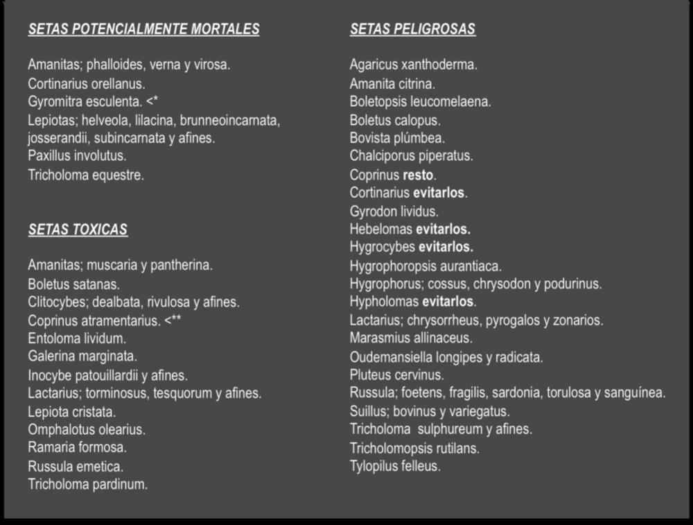 Fuente: Enciclopedia Catalana