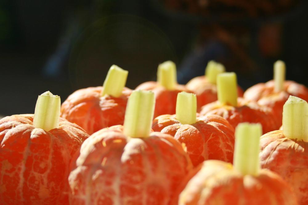 Cutie Pumpkins.