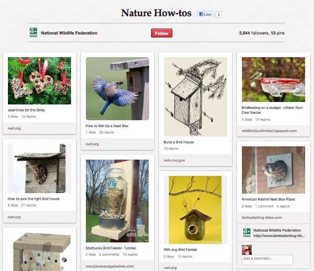 National Wildlife Federation on Pinterest