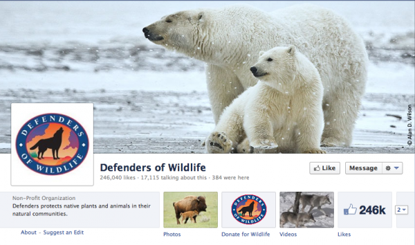 Defenders of Wildlife  uses a beautiful shot of a parent and child polar bear, matching well with the current winter season.