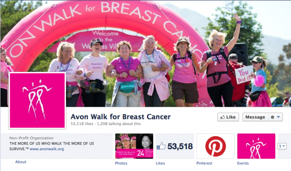 The Avon Walk for Breast Cancer has a great shot of triumphant walkers working as a team, giving the viewer a sense of both the fun and importance of the event.