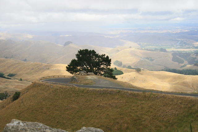 View from Te Mata Peak in Napier