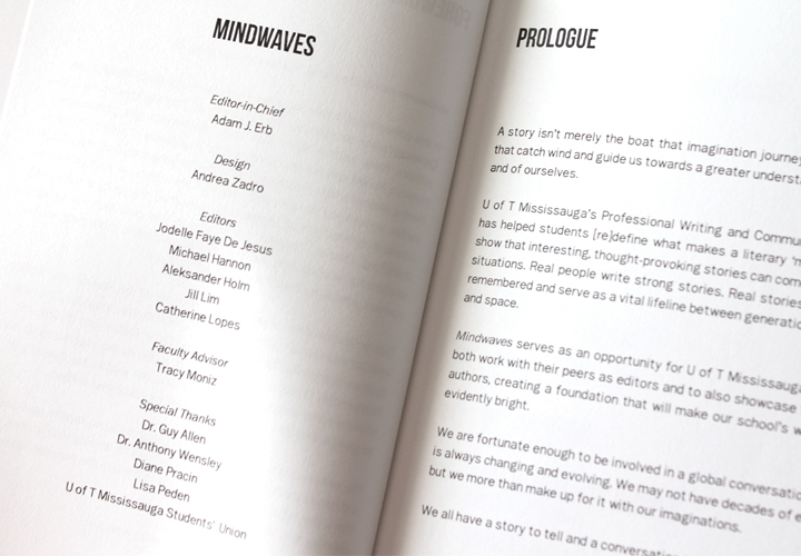 Mindwaves-New-04.jpg