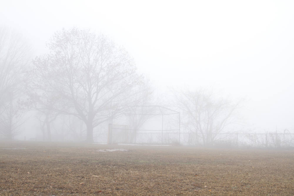Fog10_11.jpg