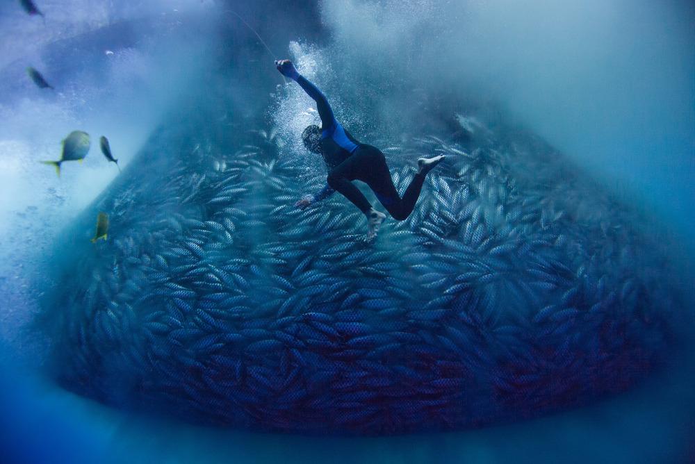 рыбалка на тихой воде