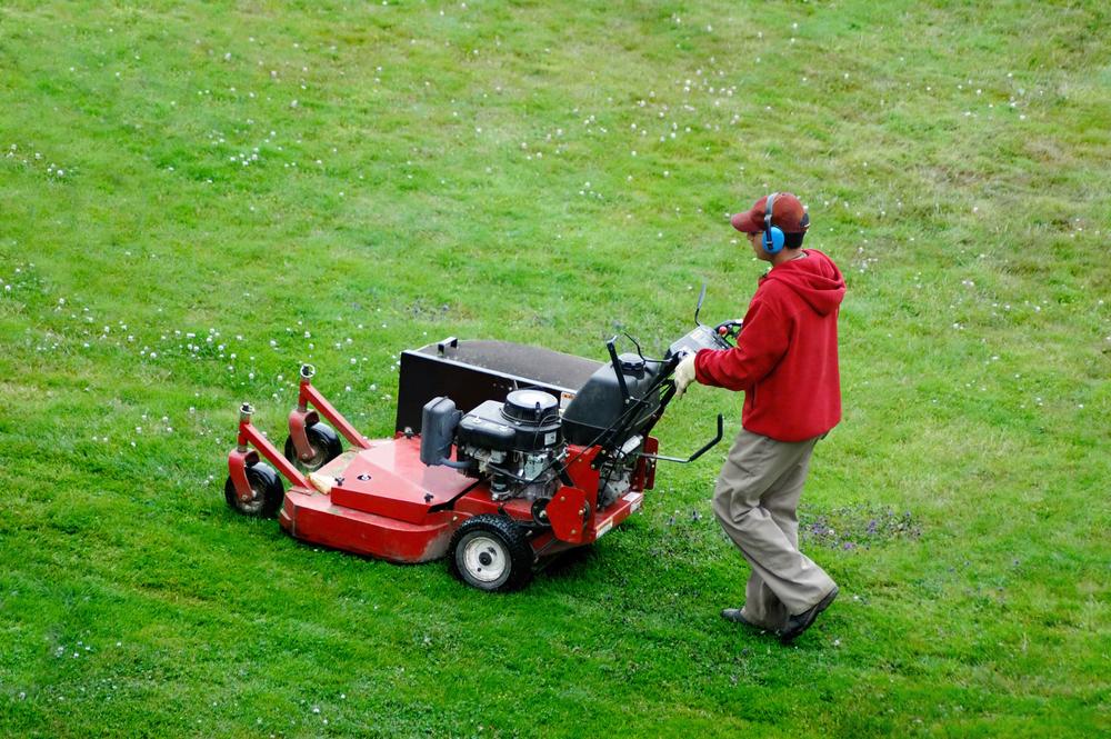 Lawn-Care-4119593.jpg