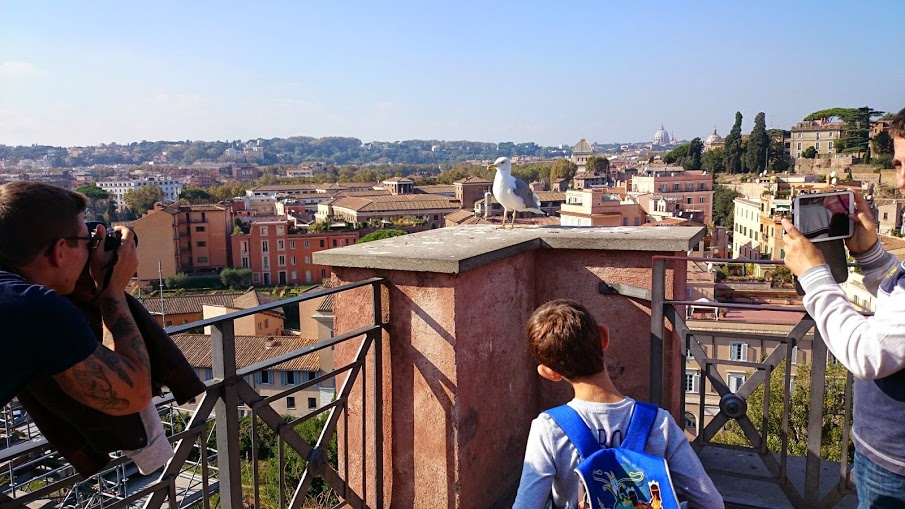 View from the Palatine Hill