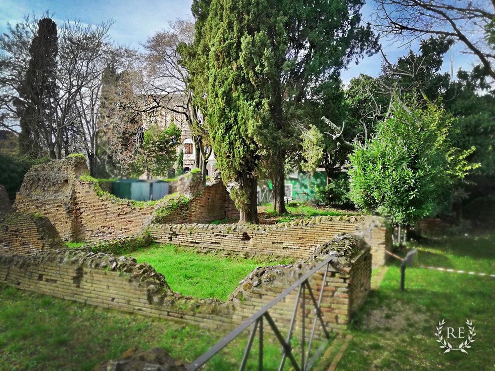 Colosseum, Ancient Rome and Domus Aurea Tours