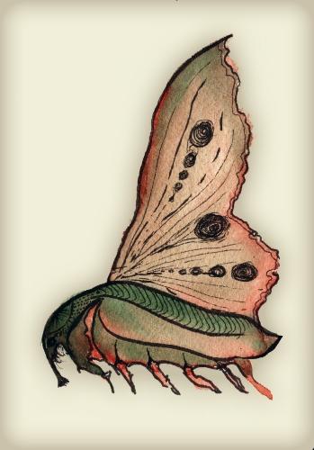 Moth  , 2012