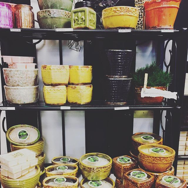 Fill your home with the New Swan Creek Candle summer scents in now at Rococo! #rococo #swancreek #soycandles