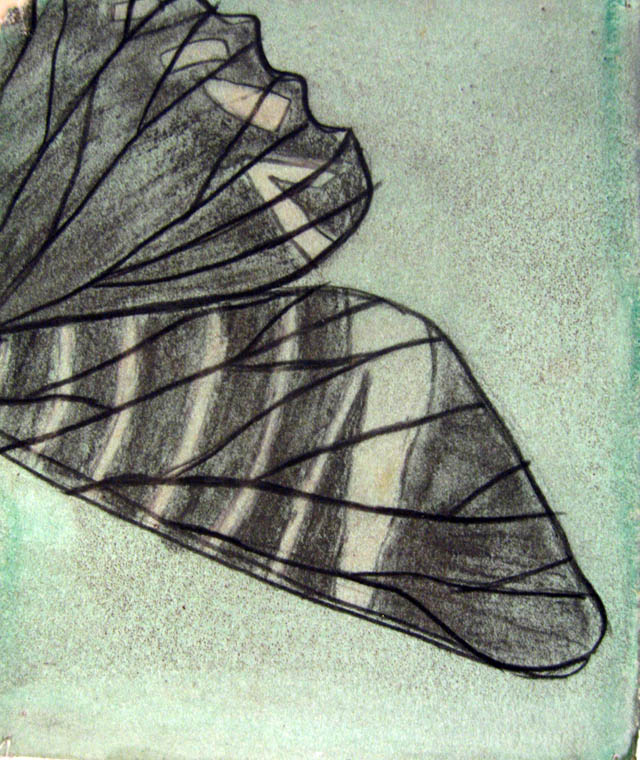 cahuita wing.jpg