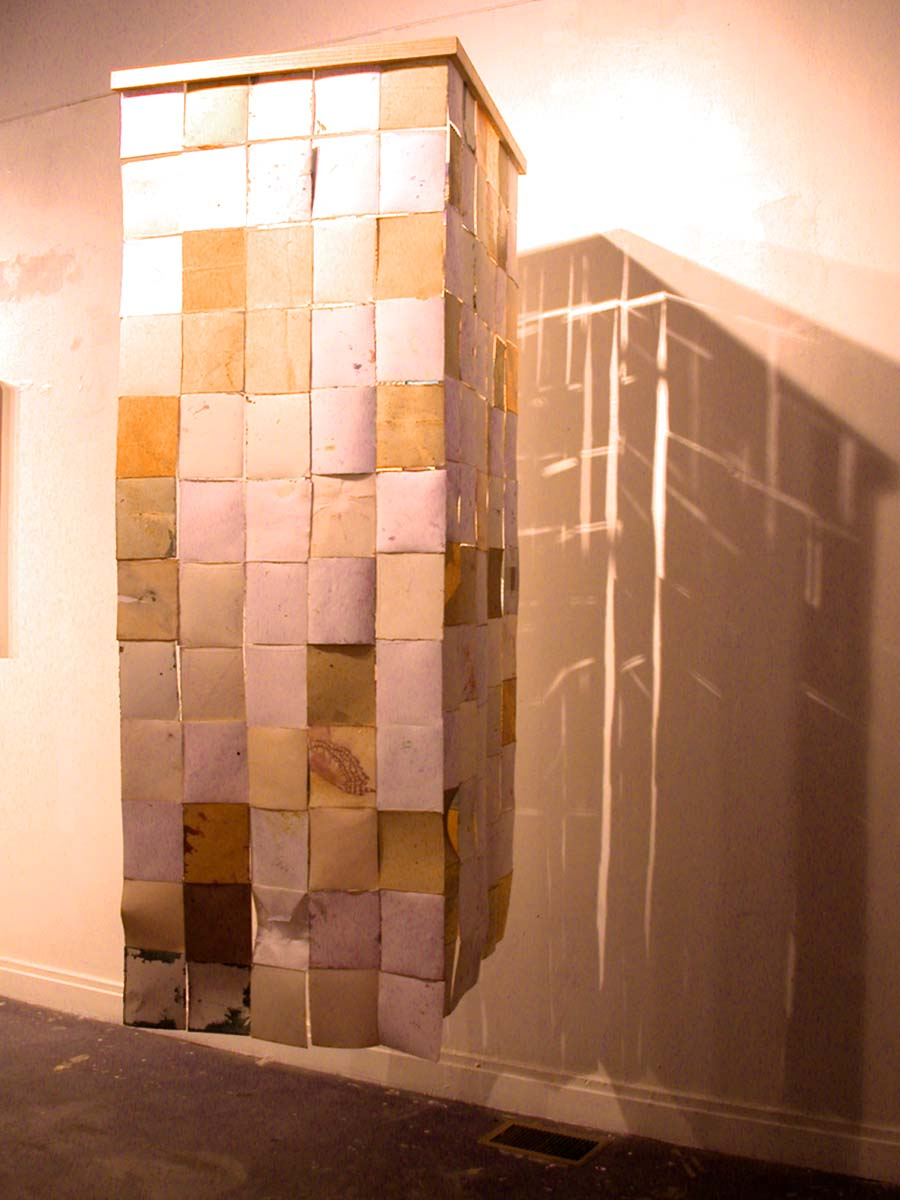 3. Wings Installation, mixed media, 2002-03.jpg