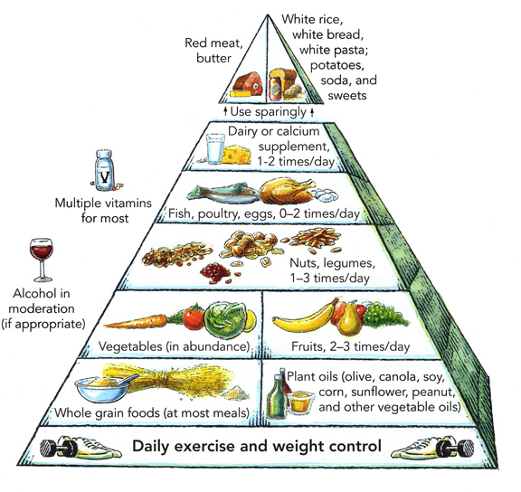 HarvardNutrition pyramid