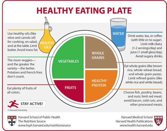 healthy-eating-plate-565