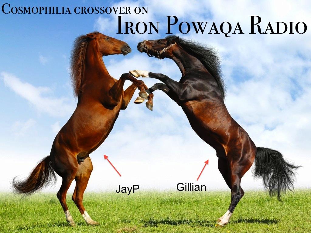 horse-horses-23582505-1024-768