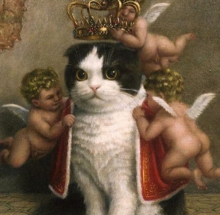 capricorn kosmo kitty 2.jpg
