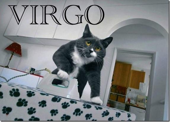 virgo kosmo kitty.jpg