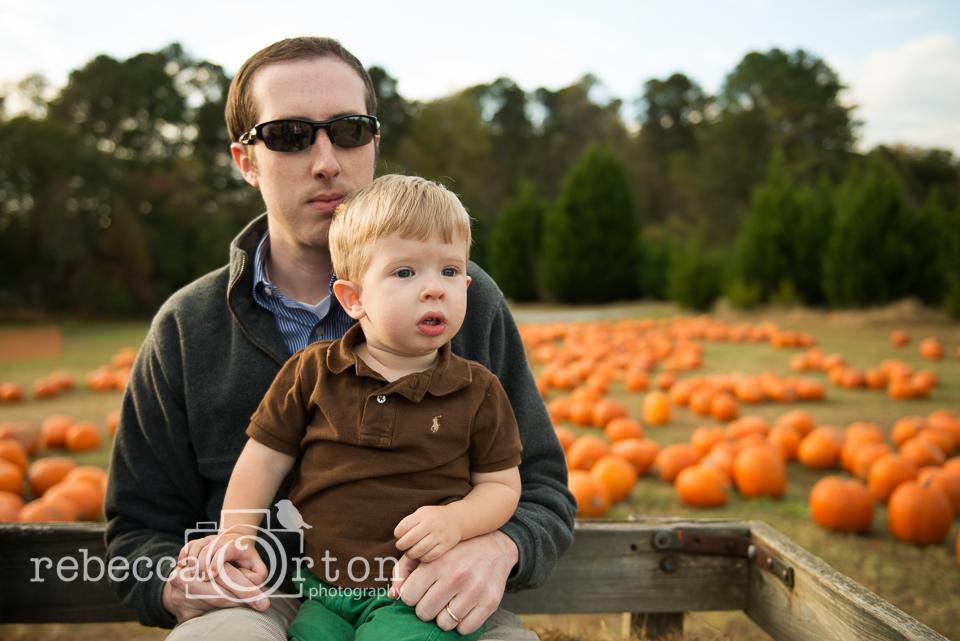 3-pumpkins2013.jpg