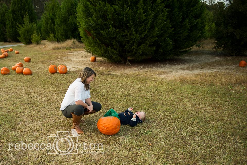 13-pumpkins2013.jpg