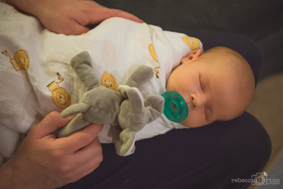 2.21.2015 Learning to take the paci. We had these elephant wubbanubs with jack, so had to stock up on some new one for Ryan.