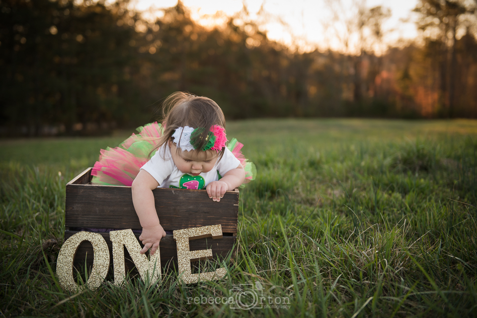 johns creek family photographer