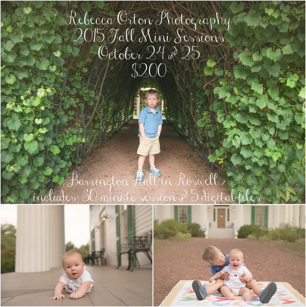 atlanta 2015 fall mini photo sessions