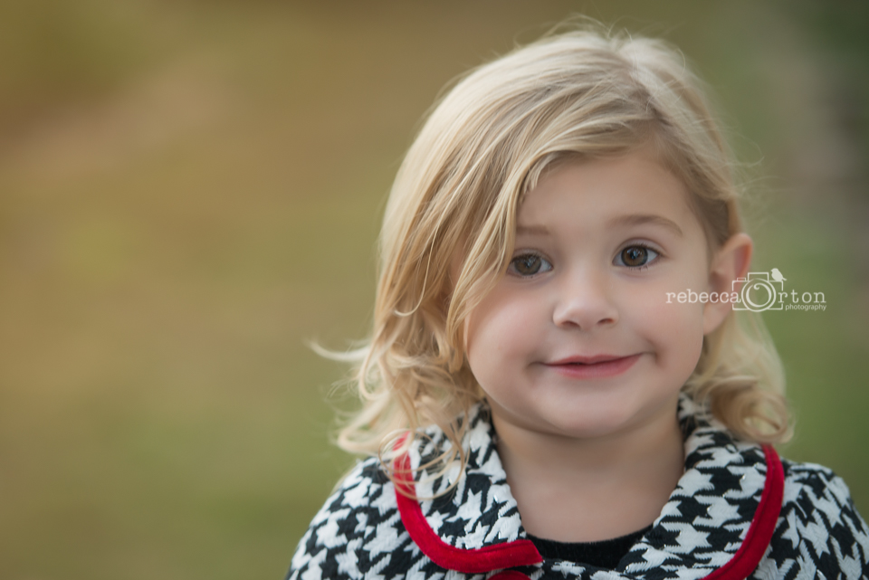 beautiful 3 year old in houndstooth closeup