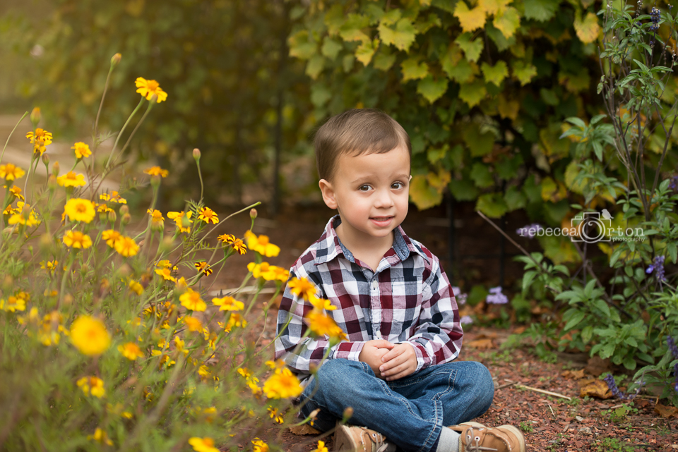 3 year old sitting in garden