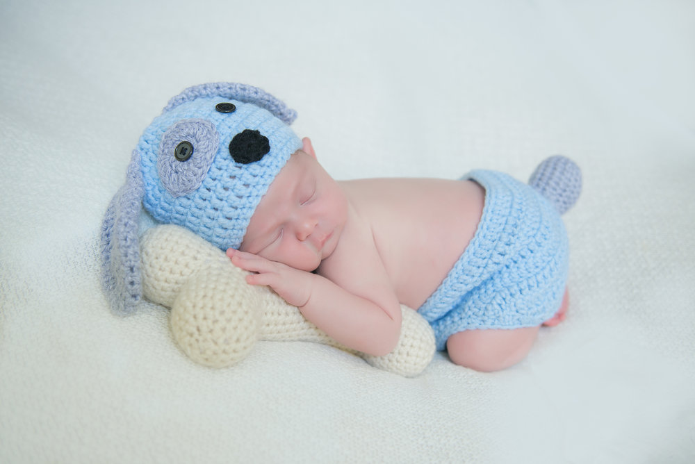 newborn baby knit puppy