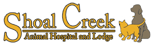 Shoal-Creek-Animal-Hospital.jpg