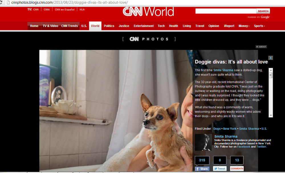 Tearsheet_CNN_2.jpg