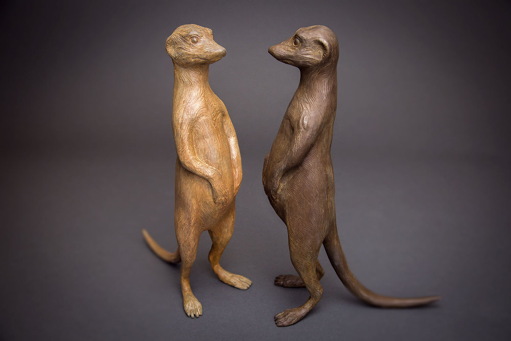 Meerkat-Couple-2-web.jpg
