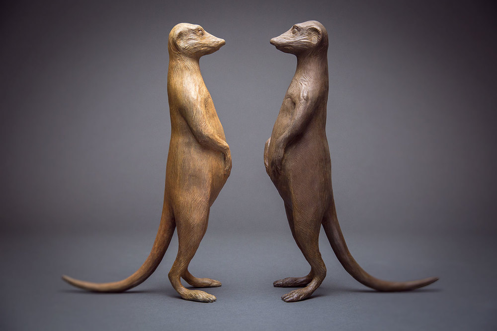meerkat-couple-web.jpg
